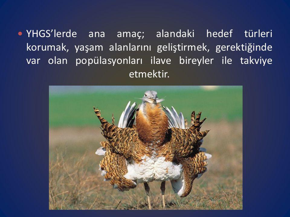 YHGS'lerde ana amaç; alandaki hedef türleri korumak, yaşam alanlarını geliştirmek, gerektiğinde var olan popülasyonları ilave bireyler ile takviye etmektir.