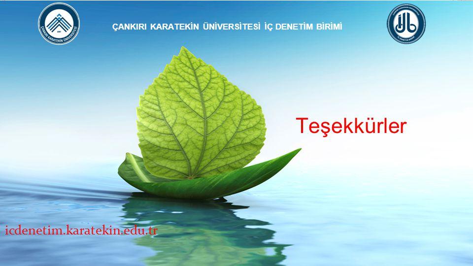 Teşekkürler ÇANKIRI KARATEKİN ÜNİVERSİTESİ İÇ DENETİM BİRİMİ icdenetim.karatekin.edu.tr