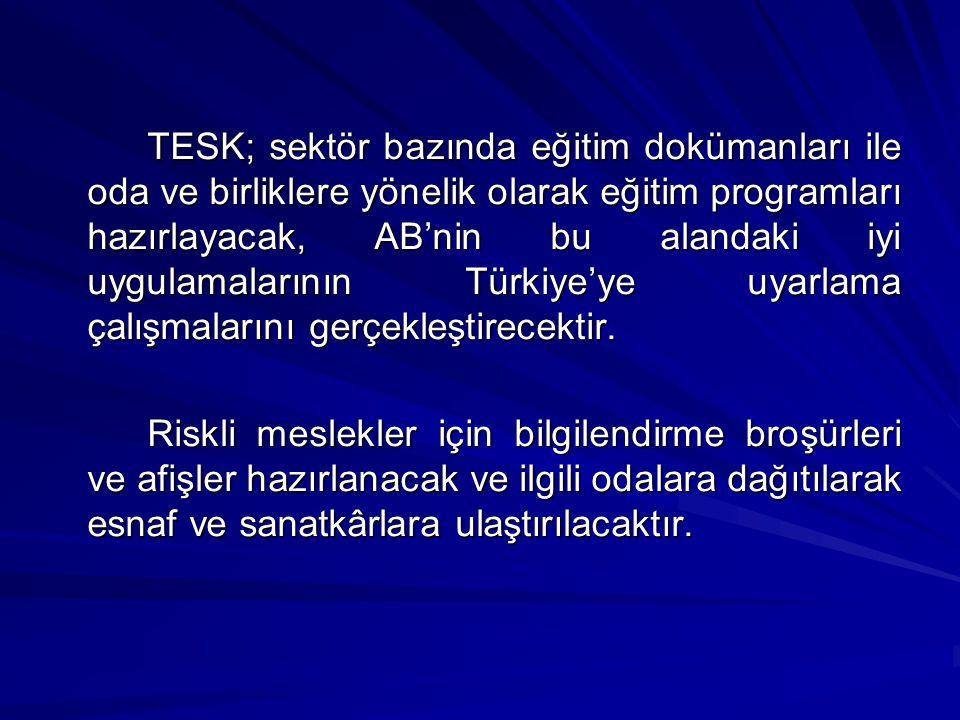 TESK; sektör bazında eğitim dokümanları ile oda ve birliklere yönelik olarak eğitim programları hazırlayacak, AB'nin bu alandaki iyi uygulamalarının Türkiye'ye uyarlama çalışmalarını gerçekleştirecektir.