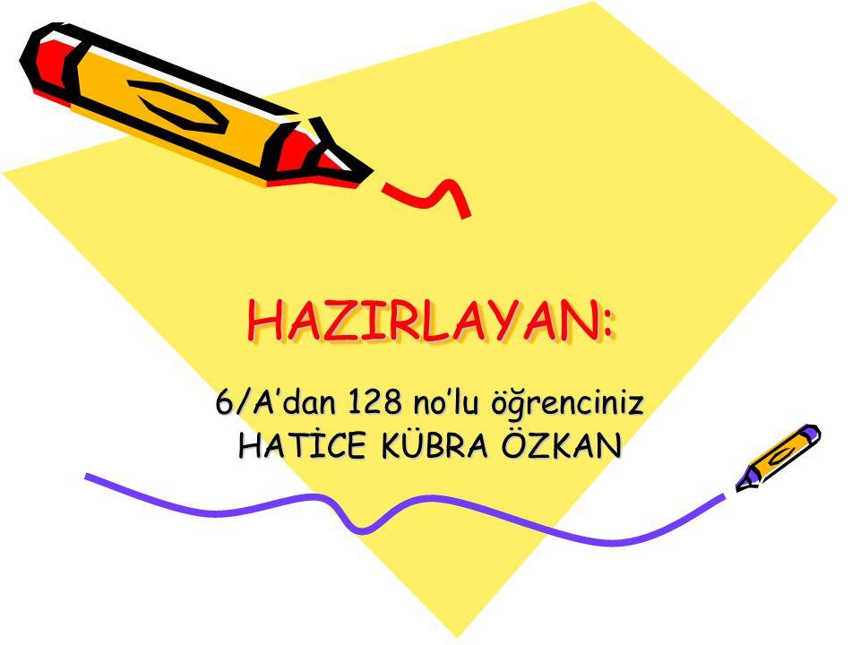 HAZIRLAYAN:HAZIRLAYAN: 6/A'dan 128 no'lu öğrenciniz HATİCE KÜBRA ÖZKAN