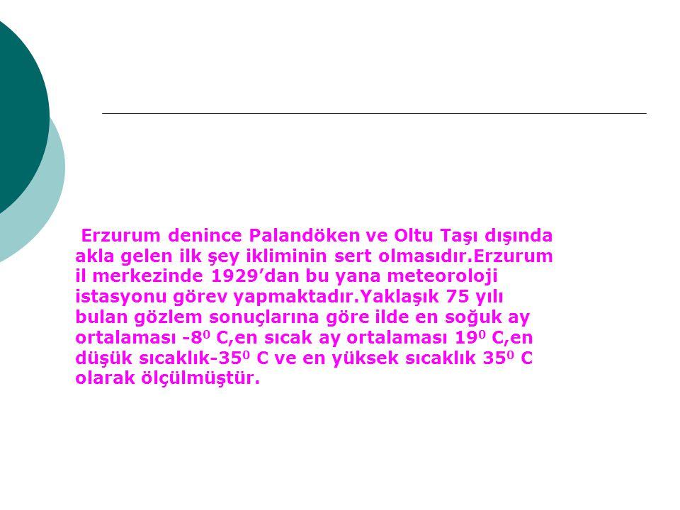 Erzurum denince Palandöken ve Oltu Taşı dışında akla gelen ilk şey ikliminin sert olmasıdır.Erzurum il merkezinde 1929'dan bu yana meteoroloji istasyo