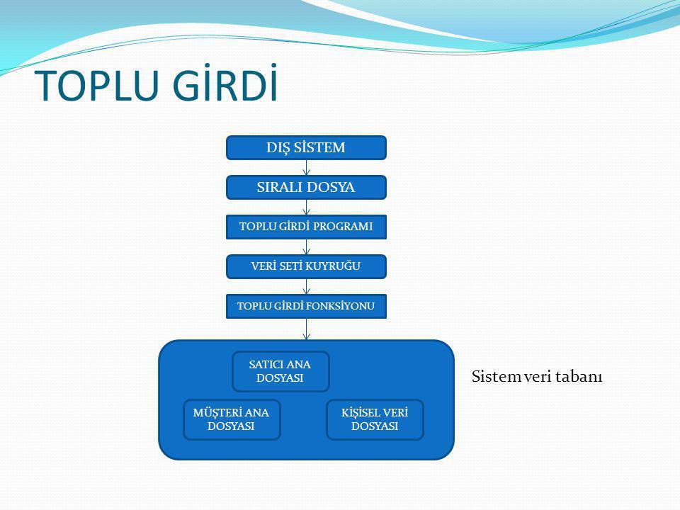 TOPLU GİRDİ Toplu veri girişinin üstünlükleri; Daha bağımsız veri girişi: girilecek verilerin hazır olması ve girişinin herhangi bir zamanda ve şekilde yepılabilmesi.