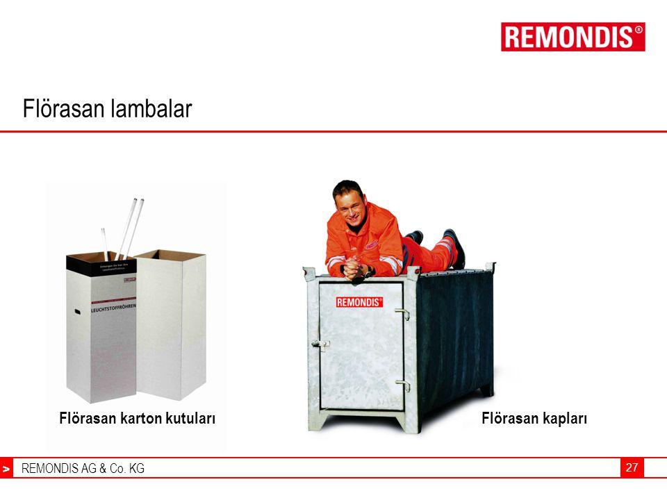 REMONDIS AG & Co. KG > 27 Flörasan lambalar Flörasan karton kutularıFlörasan kapları