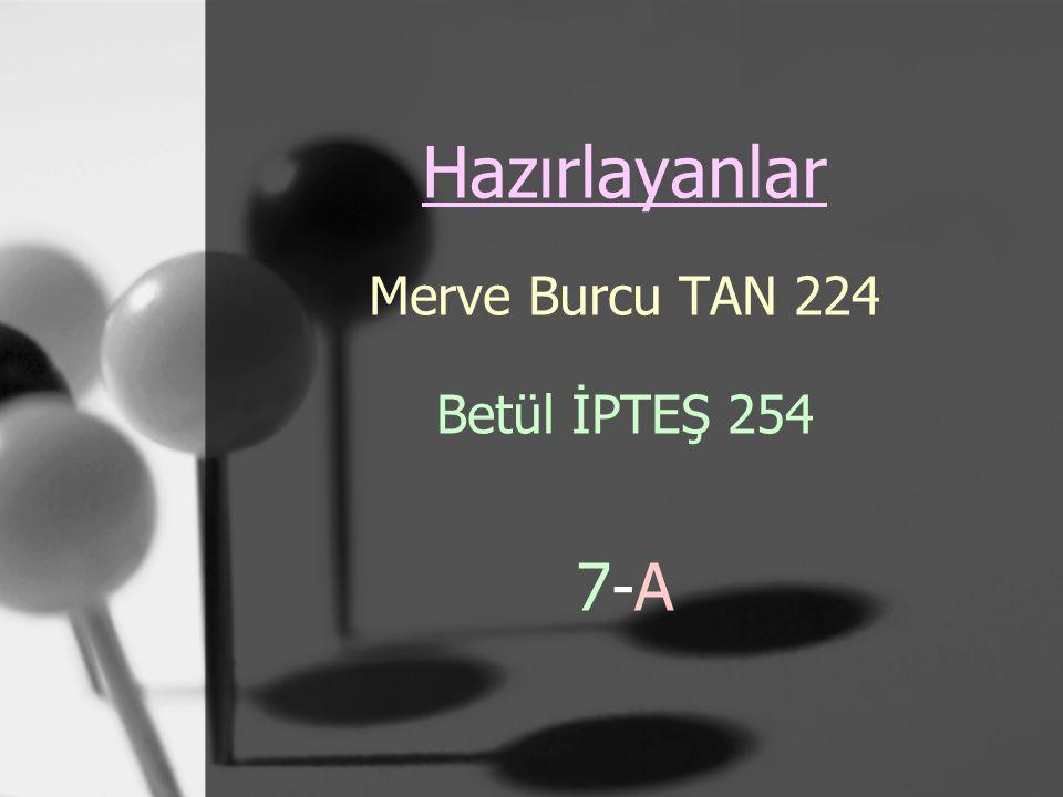 Hazırlayanlar Merve Burcu TAN 224 Betül İPTEŞ 254 7-A7-A