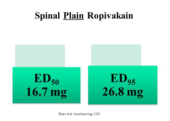 Spinal Plain Ropivakain Khaw et al. Anesthesiology 2001