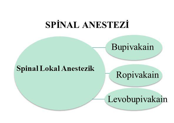 SPİNAL ANESTEZİ Spinal Lokal Anestezik Bupivakain Ropivakain Levobupivakain