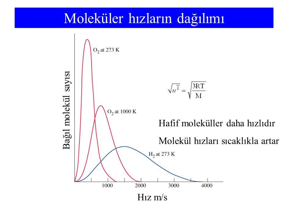 Moleküler hızların dağılımı Hız m/s Bağıl molekül sayısı Hafif moleküller daha hızlıdır Molekül hızları sıcaklıkla artar
