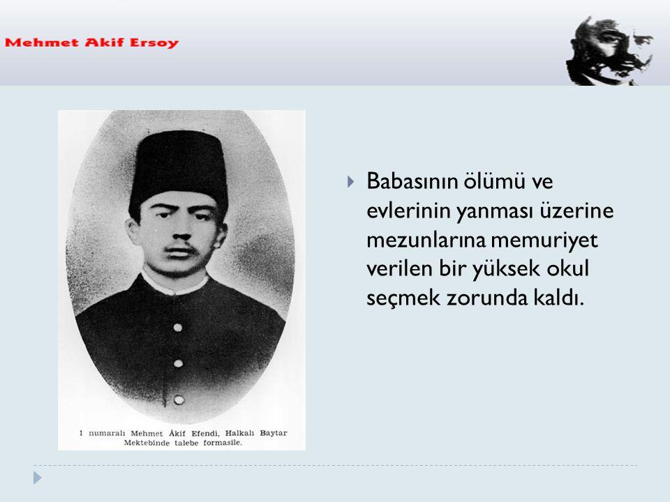  1913 ′ te Mısır'a iki aylık bir gezi yaptı.Dönüşte Medine'ye u ğ radı.