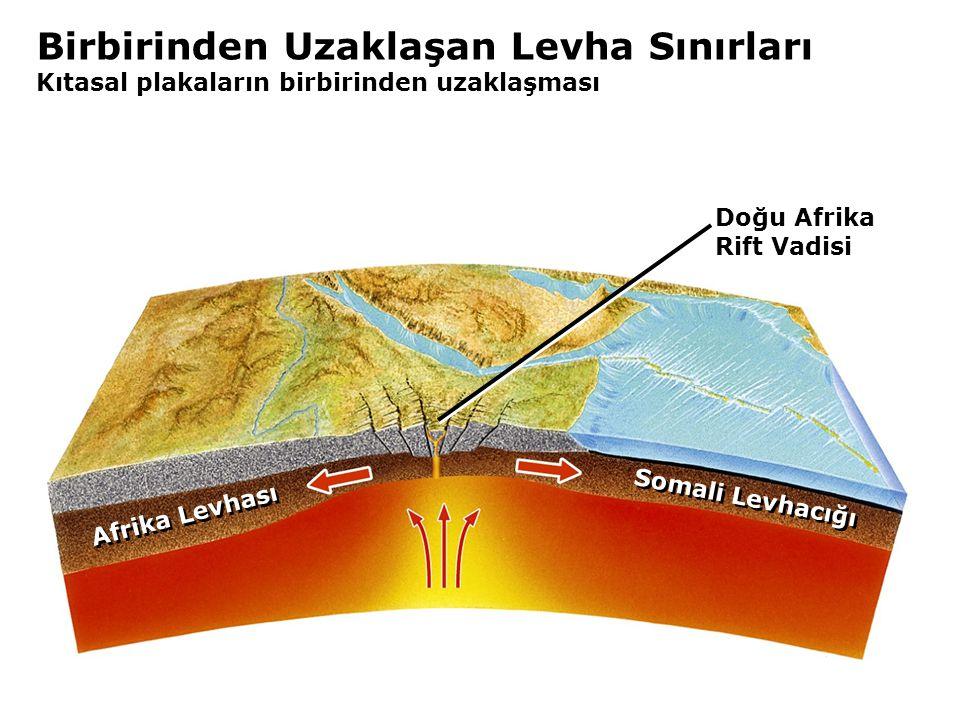 Birbirinden Uzaklaşan Levha Sınırları Kıtasal plakaların birbirinden uzaklaşması Doğu Afrika Rift Vadisi Somali Levhacığı Afrika Levhası