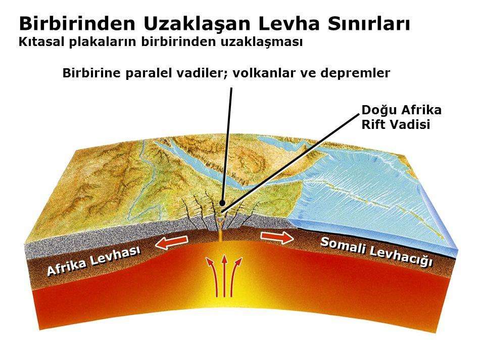 Birbirinden Uzaklaşan Levha Sınırları Kıtasal plakaların birbirinden uzaklaşması Doğu Afrika Rift Vadisi Somali Levhacığı Afrika Levhası Birbirine paralel vadiler; volkanlar ve depremler
