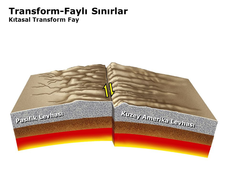 Transform-Faylı Sınırlar Kıtasal Transform Fay Kuzey Amerika Levhası Pasifik Levhası