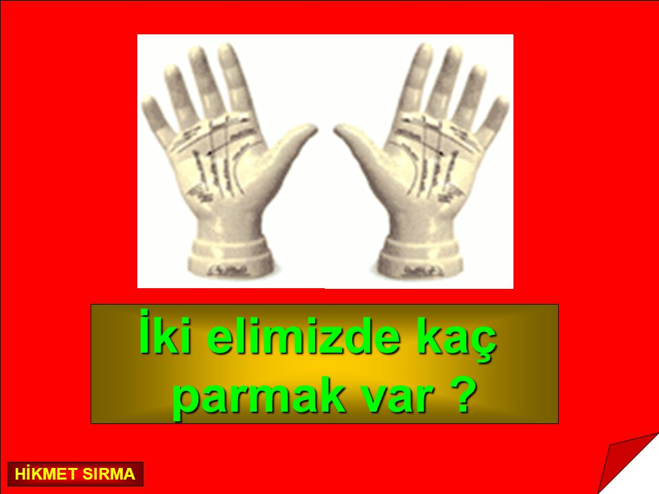 İki elimizde kaç parmak var ? HİKMET SIRMA