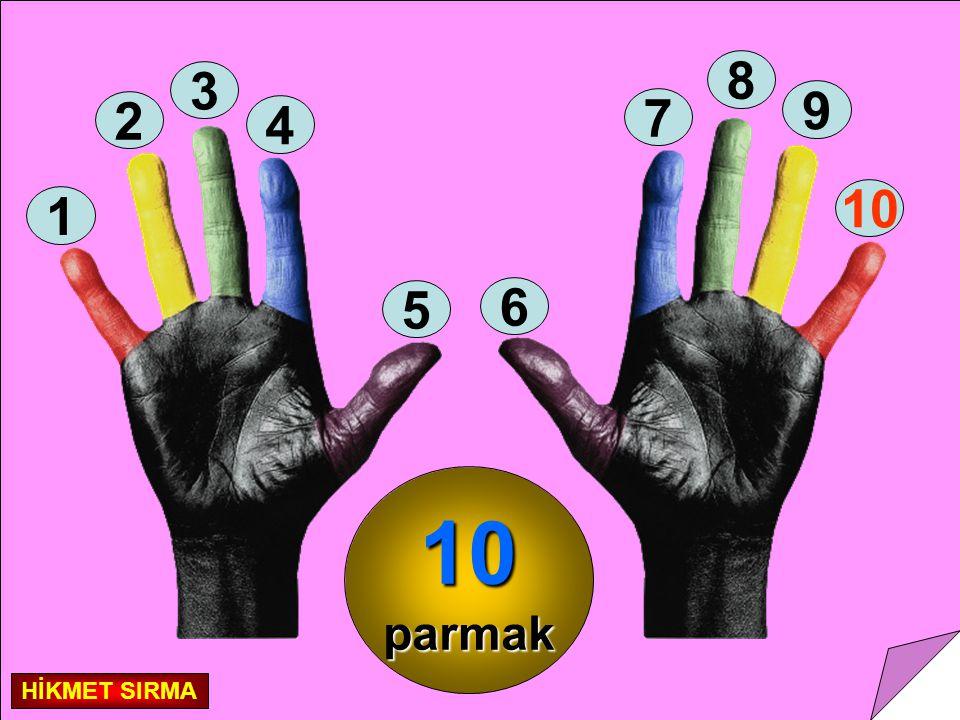 Parmak sayılarımız 10 tanedir. 10 parmak = 1 deste HİKMET SIRMA