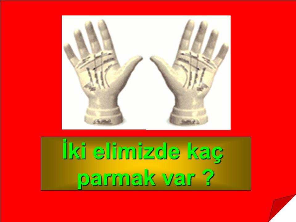 İki elimizde kaç parmak var ?