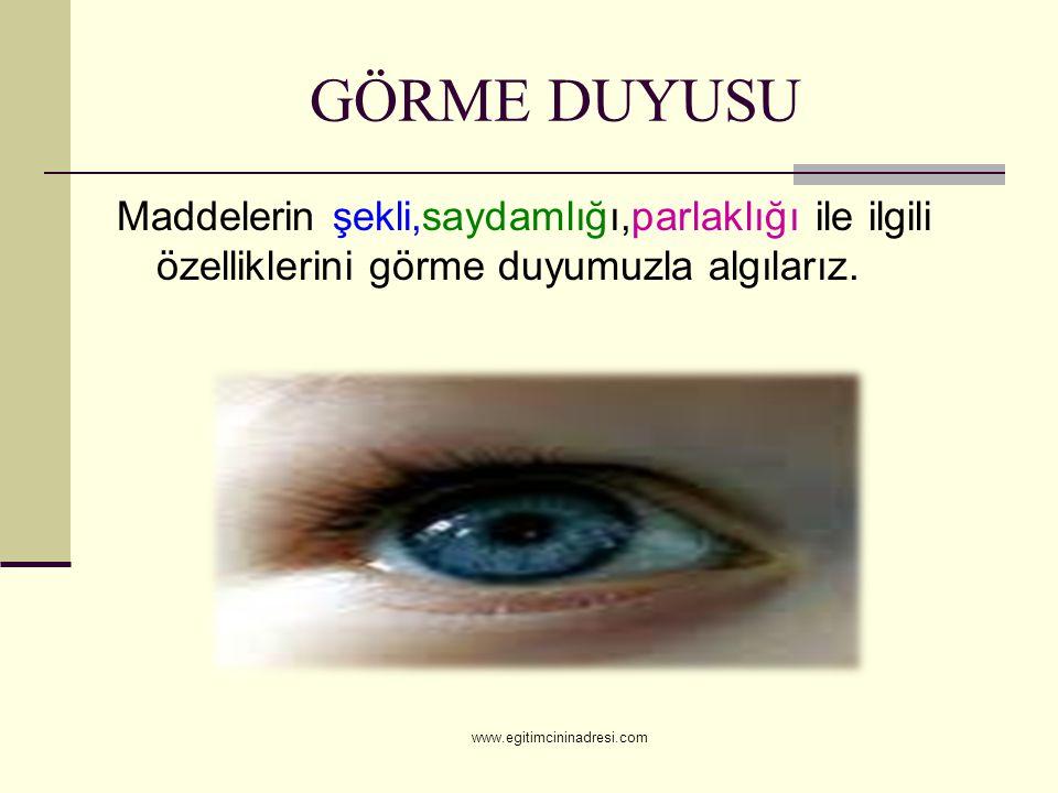 GÖRME DUYUSU Maddelerin şekli,saydamlığı,parlaklığı ile ilgili özelliklerini görme duyumuzla algılarız. www.egitimcininadresi.com
