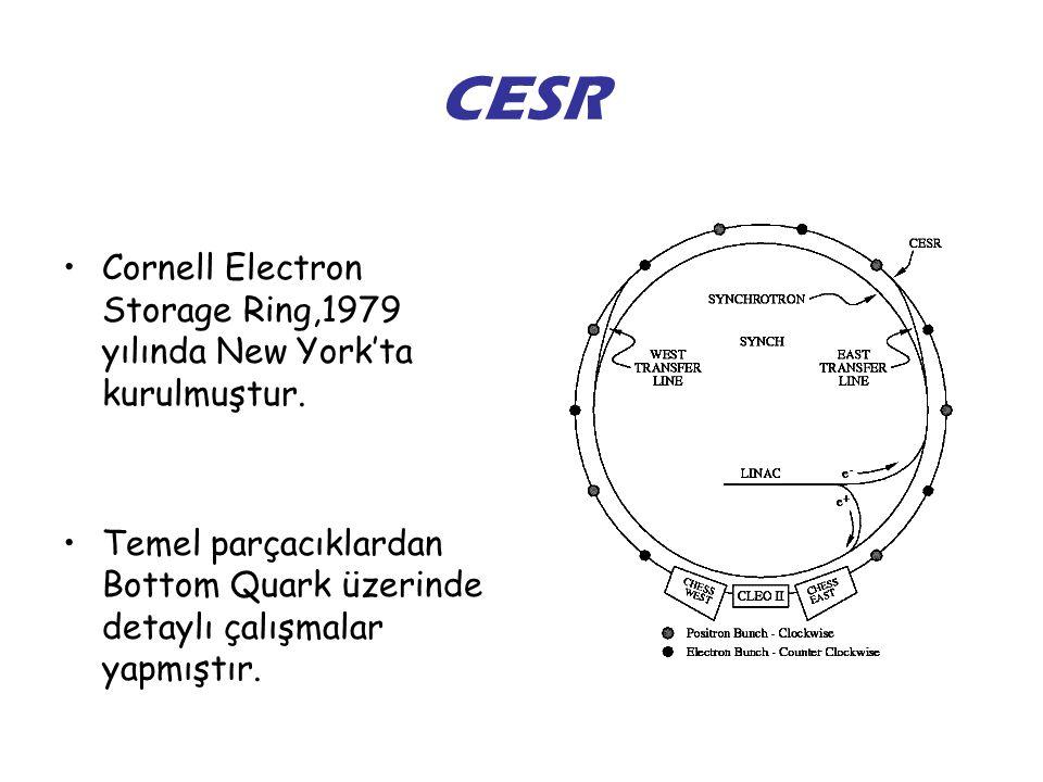 CESR Cornell Electron Storage Ring,1979 yılında New York'ta kurulmuştur.