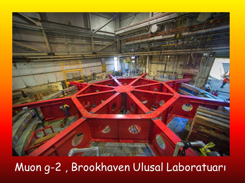 Muon g-2, Brookhaven Ulusal Laboratuarı
