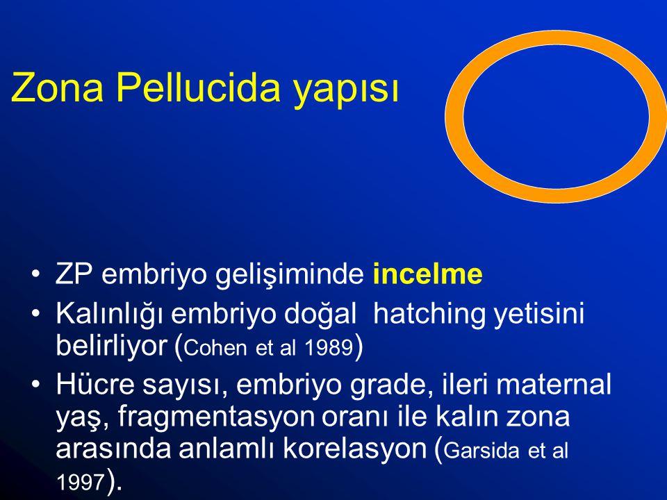 Zona Pellucida yapısı ZP embriyo gelişiminde incelme Kalınlığı embriyo doğal hatching yetisini belirliyor ( Cohen et al 1989 ) Hücre sayısı, embriyo g