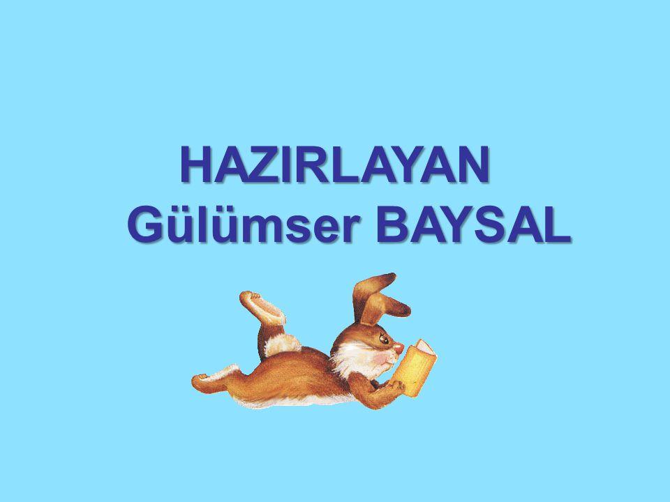 HAZIRLAYAN Gülümser BAYSAL Gülümser BAYSAL