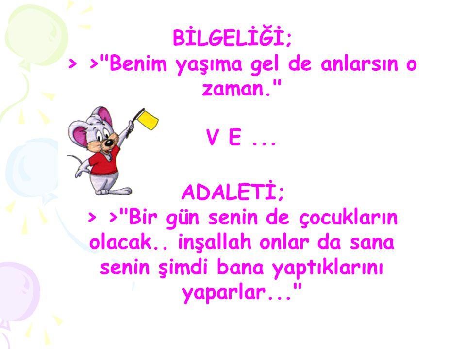 BİLGELİĞİ; > >