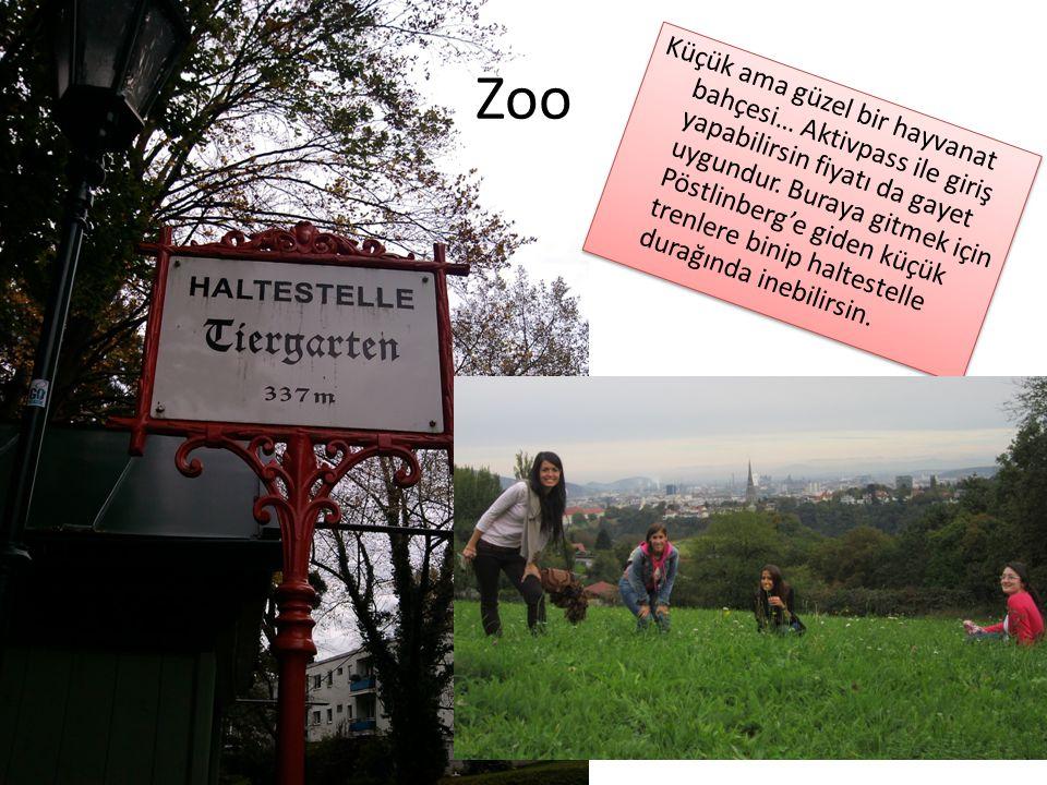 Zoo Küçük ama güzel bir hayvanat bahçesi… Aktivpass ile giriş yapabilirsin fiyatı da gayet uygundur. Buraya gitmek için Pöstlinberg'e giden küçük tren