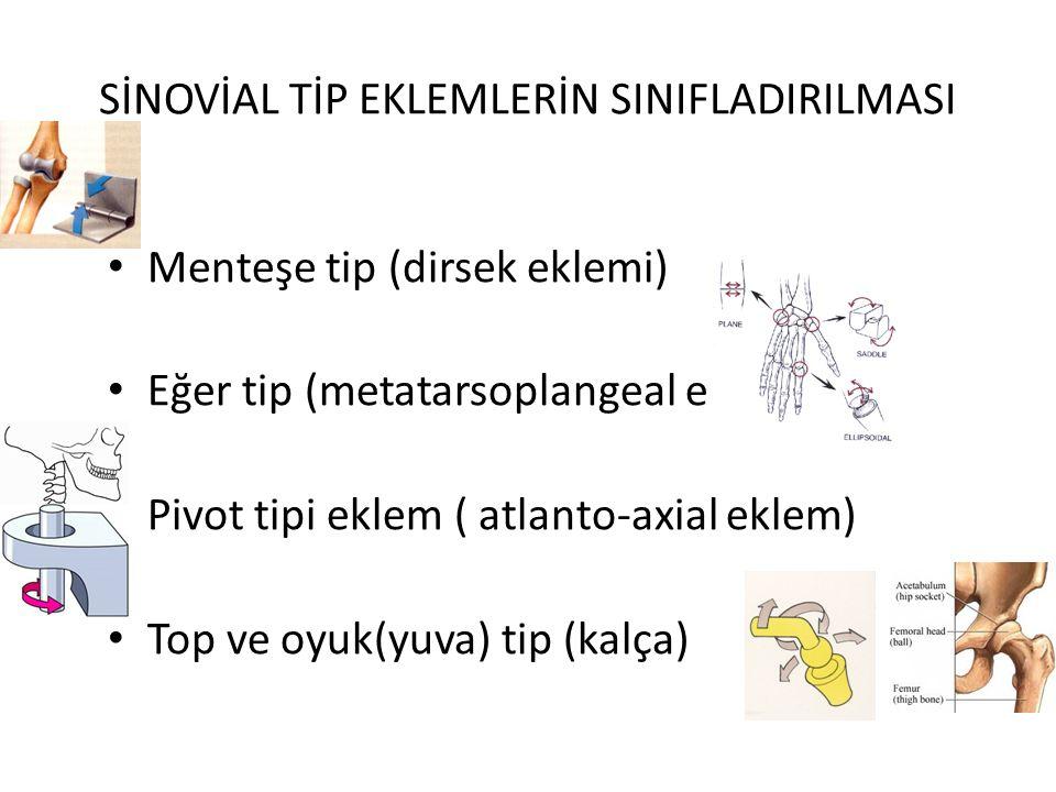 SİNOVİAL TİP EKLEMLERİN SINIFLADIRILMASI Menteşe tip (dirsek eklemi) Eğer tip (metatarsoplangeal e) Pivot tipi eklem ( atlanto-axial eklem) Top ve oyu