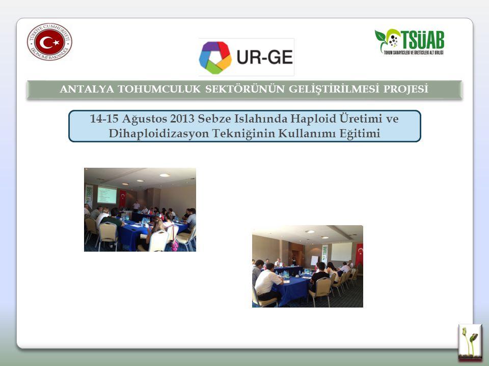 14-15 Ağustos 2013 Sebze Islahında Haploid Üretimi ve Dihaploidizasyon Tekniğinin Kullanımı Eğitimi ANTALYA TOHUMCULUK SEKTÖRÜNÜN GELİŞTİRİLMESİ PROJESİ