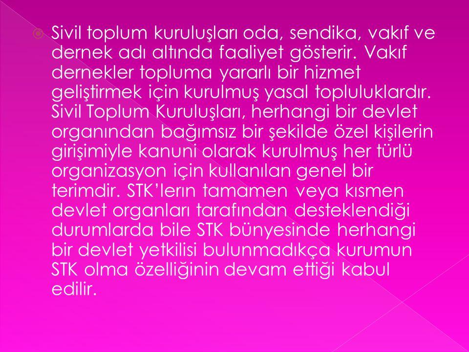  Vakıf statüsünde kurulmuş sivil toplum kuruluşları Ankara Losemili Cocuklar Vakfı (LÖSEV) Beyaz Nokta Gelişim Vakfı Bilim ve Sanat Vakfı (BİSAV) Çevre ve Kültür Değerlerini Koruma ve Tanıtma Vakfı (ÇEKÜL) Çocuk Vakfı Gazeteciler ve Yazarlar Vakfı (GYV) Geleceğimizin Çocukları Vakfı (GCV) ICEP Uluslararası Kültürel Değişim Programları Burs Vakfı İktisadi Kalkınma Vakfı (İKV) İlköğretim Okullarına Yardım Vakfı (İLKYAR) İstanbul Kültür Sanat Vakfı (İKSV) Kadın Emeğini Değerlendirme Vakfı (KEDV) Kafkas Vakfı Nesin Vakfı