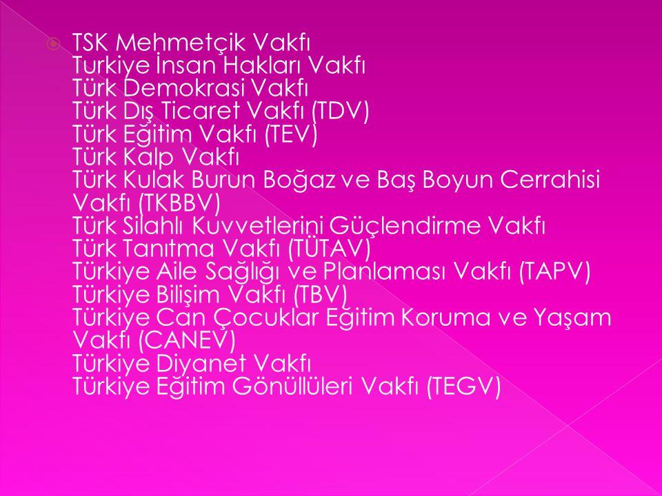  TSK Mehmetçik Vakfı Turkiye İnsan Hakları Vakfı Türk Demokrasi Vakfı Türk Dış Ticaret Vakfı (TDV) Türk Eğitim Vakfı (TEV) Türk Kalp Vakfı Türk Kulak