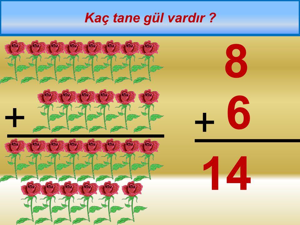 + = Tabaklarda kaç tane elma vardır 5 + 4 = 9