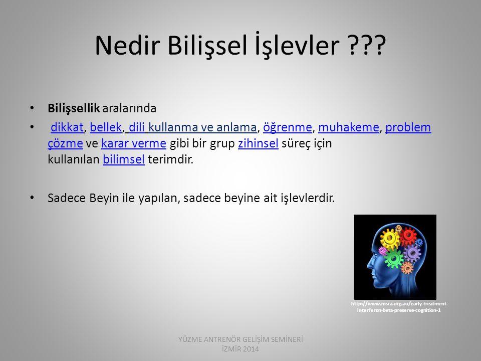 Dev Cogn Neurosci.2014 Jan;7:53-64. Dev Cogn Neurosci.