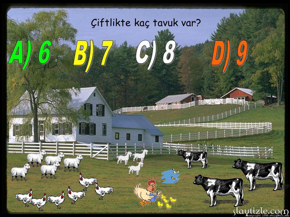 Çiftlikte kaç tavuk var?