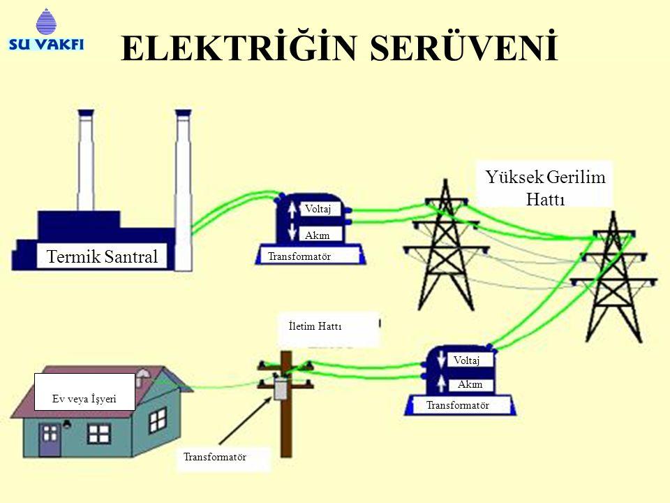 BİOKÜTLE (CANLI KÜTLE) Termik Santral Elektrik Taşıt Yakıt Üretimi Enerji Ormanı