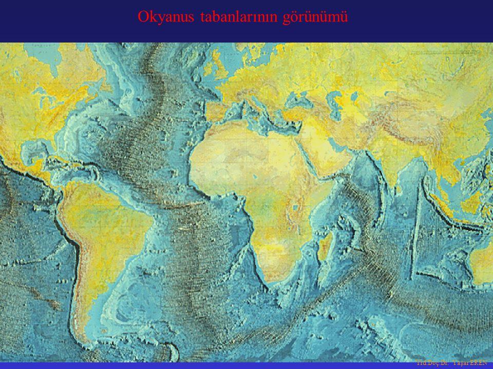Okyanus tabanlarının görünümü Yrd.Doç.Dr. Yaşar EREN