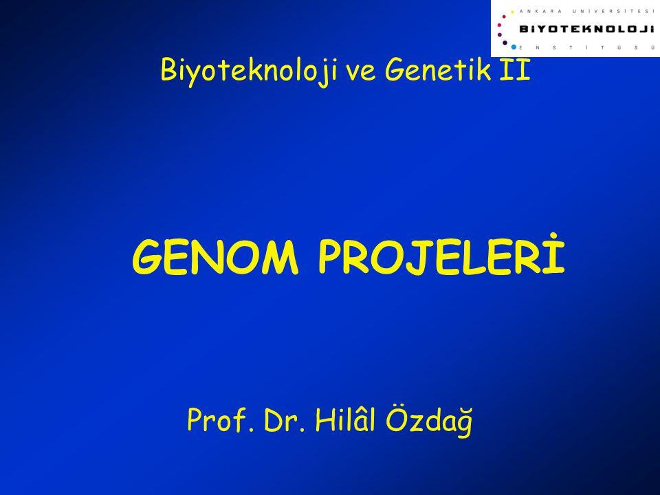 GENOM PROJELERİ Prof. Dr. Hilâl Özdağ Biyoteknoloji ve Genetik II