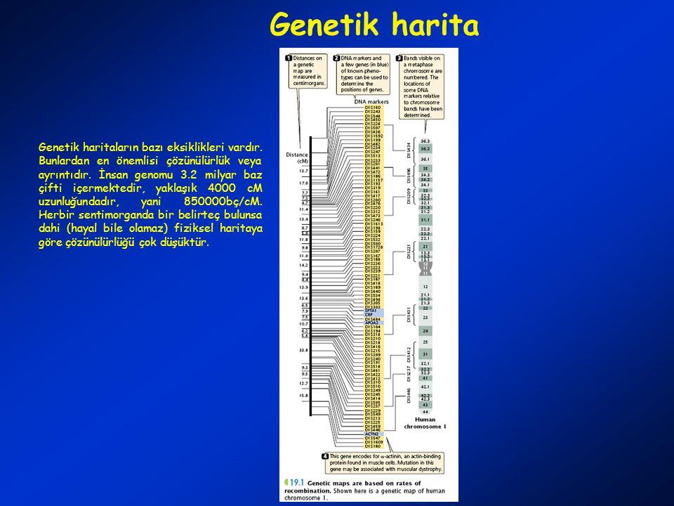 Genetik harita Genetik haritaların bazı eksiklikleri vardır.