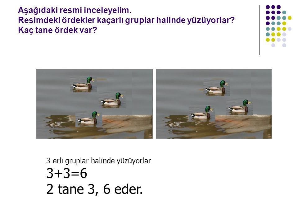 Aşağıdaki resmi inceleyelim. Resimdeki ördekler kaçarlı gruplar halinde yüzüyorlar? Kaç tane ördek var? 3 erli gruplar halinde yüzüyorlar 3+3=6 2 tane