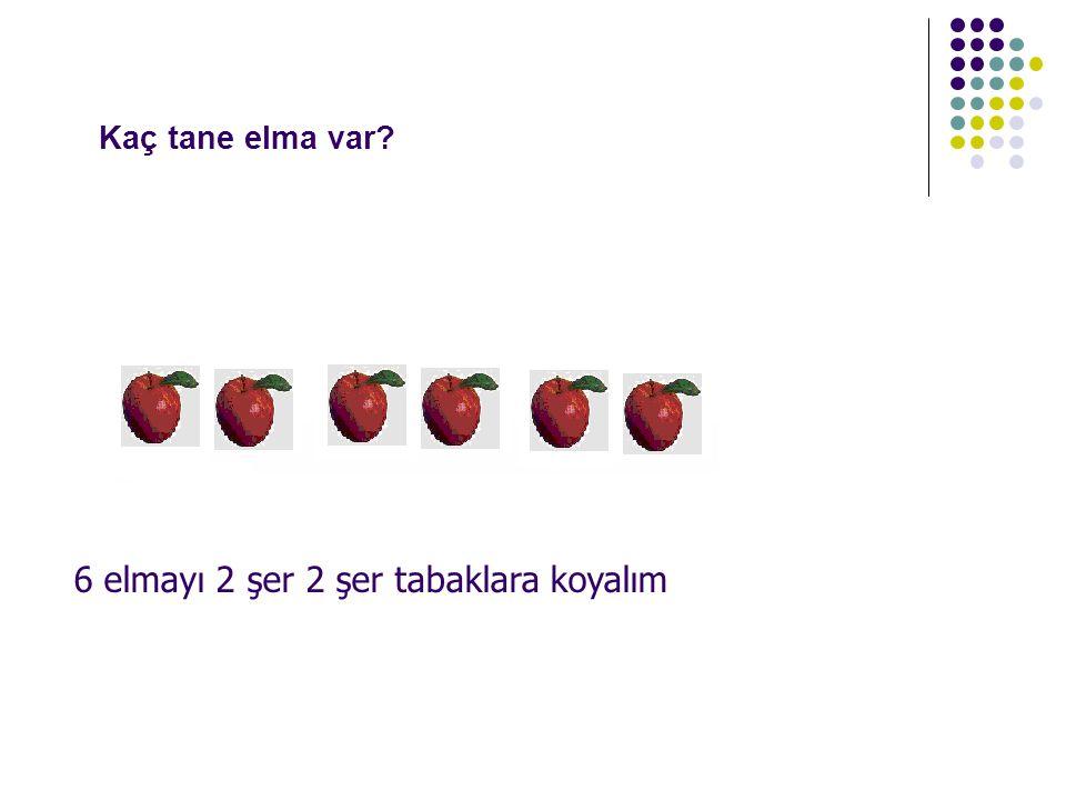 Kaç tane elma var? 6 elmayı 2 şer 2 şer tabaklara koyalım