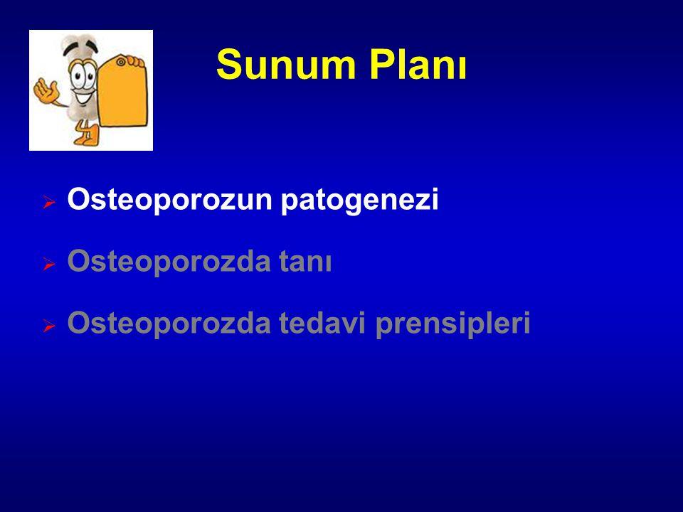 Sunum Planı  Osteoporozun patogenezi  Osteoporozda tanı  Osteoporozda tedavi prensipleri