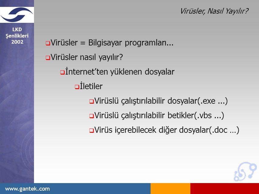 LKD Şenlikleri 2002 www.gantek.com  Virüsler = Bilgisayar programları...