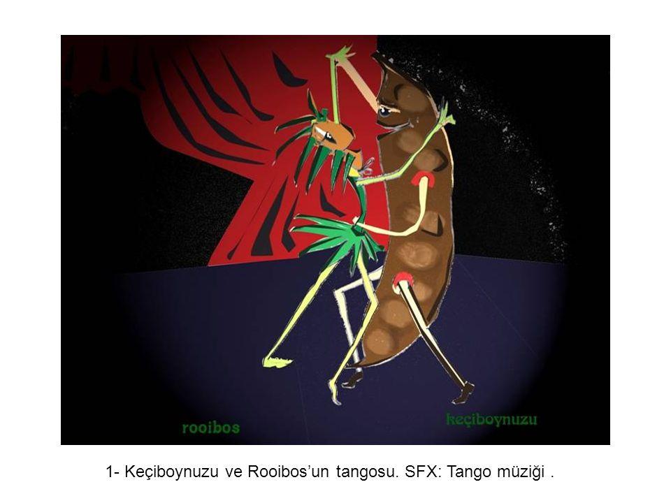 Yaratıcı Yaklaşım 1- Keçiboynuzu ve Rooibos'un tangosu. SFX: Tango müziği.