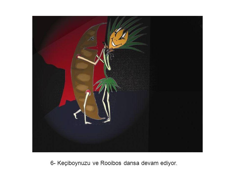 6- Keçiboynuzu ve Rooibos dansa devam ediyor.