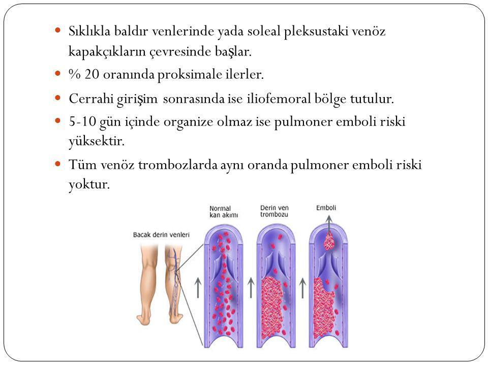 İ zole distal ven tutulumunda pulmoner emboli riski dü ş üktür.