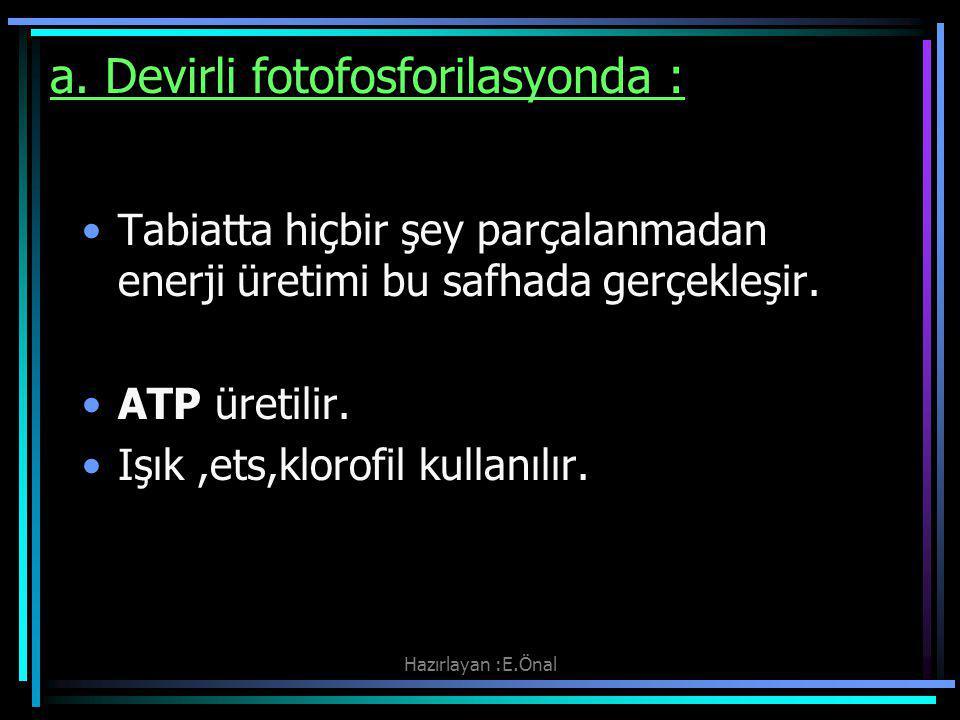 Hazırlayan :E.Önal a. Devirli fotofosforilasyonda : Tabiatta hiçbir şey parçalanmadan enerji üretimi bu safhada gerçekleşir. ATP üretilir. Işık,ets,kl