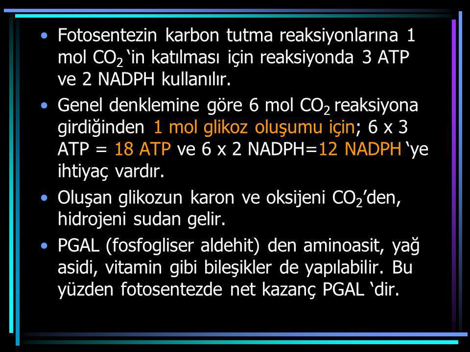 Fotosentezin karbon tutma reaksiyonlarına 1 mol CO 2 'in katılması için reaksiyonda 3 ATP ve 2 NADPH kullanılır. Genel denklemine göre 6 mol CO 2 reak