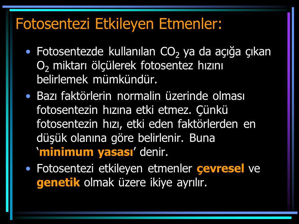 Fotosentezi Etkileyen Etmenler: Fotosentezde kullanılan CO 2 ya da açığa çıkan O 2 miktarı ölçülerek fotosentez hızını belirlemek mümkündür. Bazı fakt
