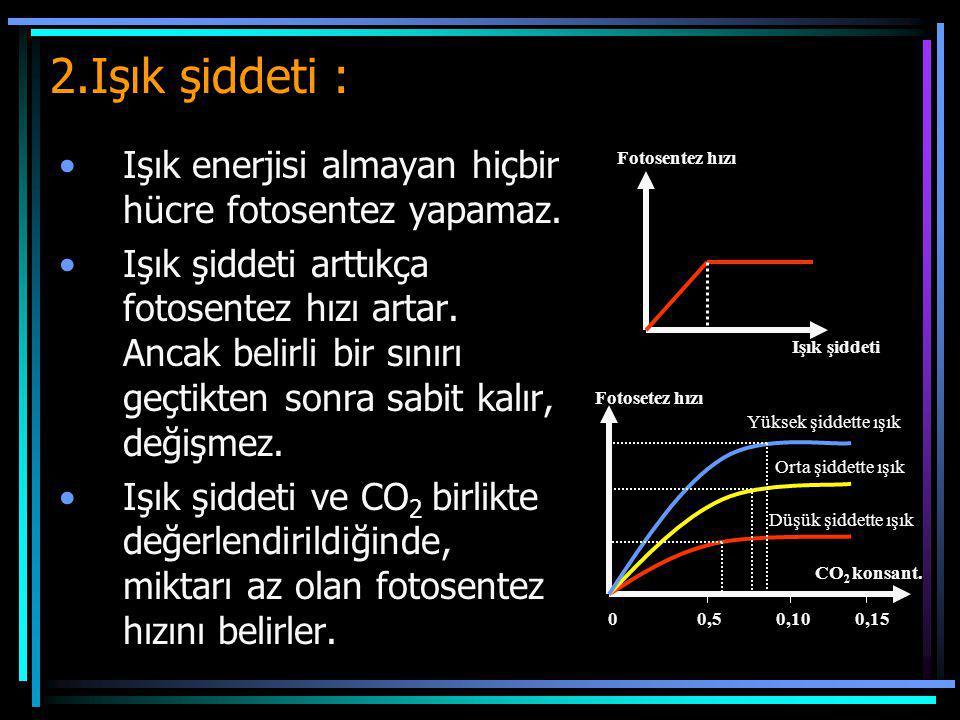 2.Işık şiddeti : Işık enerjisi almayan hiçbir hücre fotosentez yapamaz. Işık şiddeti arttıkça fotosentez hızı artar. Ancak belirli bir sınırı geçtikte