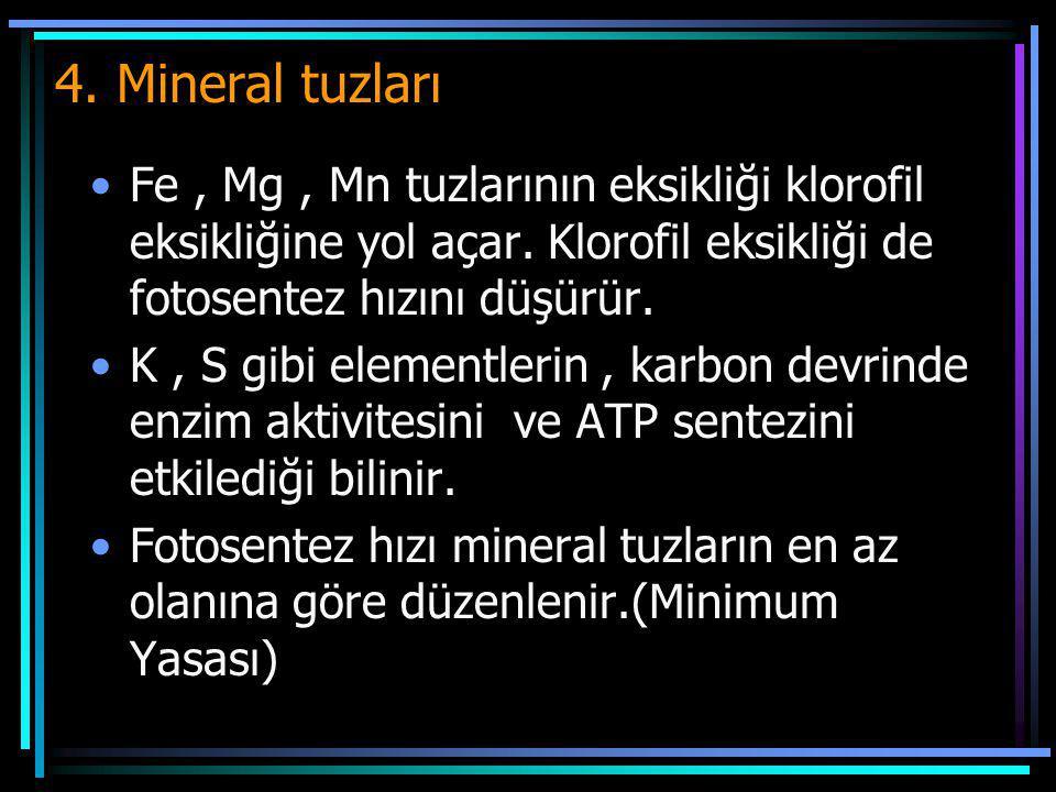 4. Mineral tuzları Fe, Mg, Mn tuzlarının eksikliği klorofil eksikliğine yol açar. Klorofil eksikliği de fotosentez hızını düşürür. K, S gibi elementle