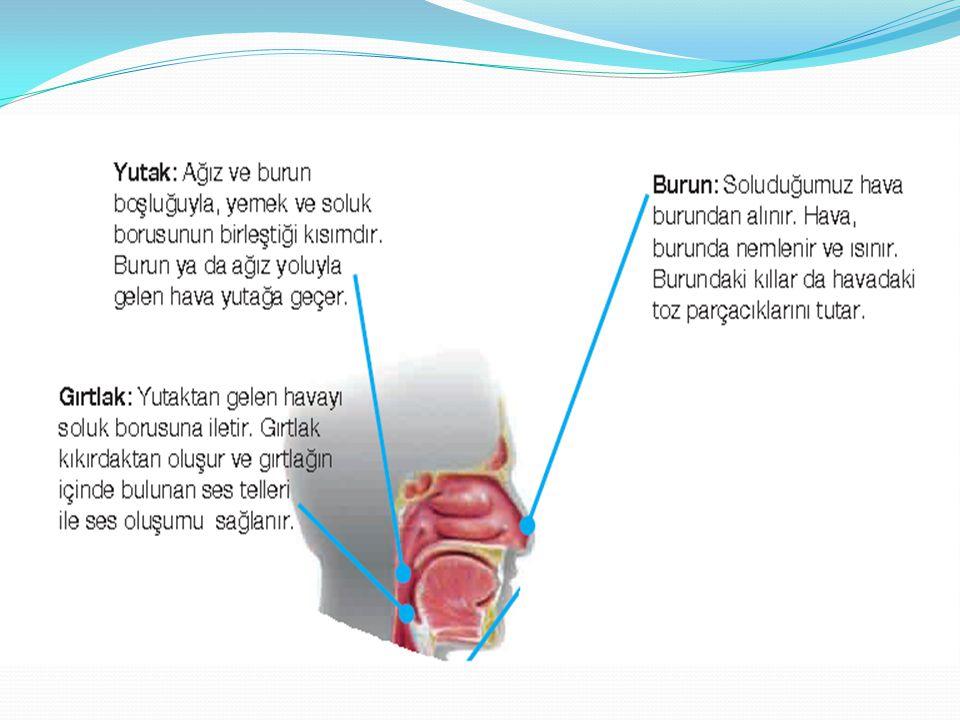 Bunun yanı sıra akciğer kanserinin teşhis ve tedavisinde bronkoskop adı verilen bir alet geliştirilmiştir.