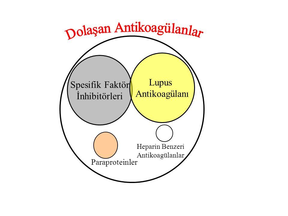 Spesifik Faktör İnhibitörleri Lupus Antikoagülanı Paraproteinler Heparin Benzeri Antikoagülanlar